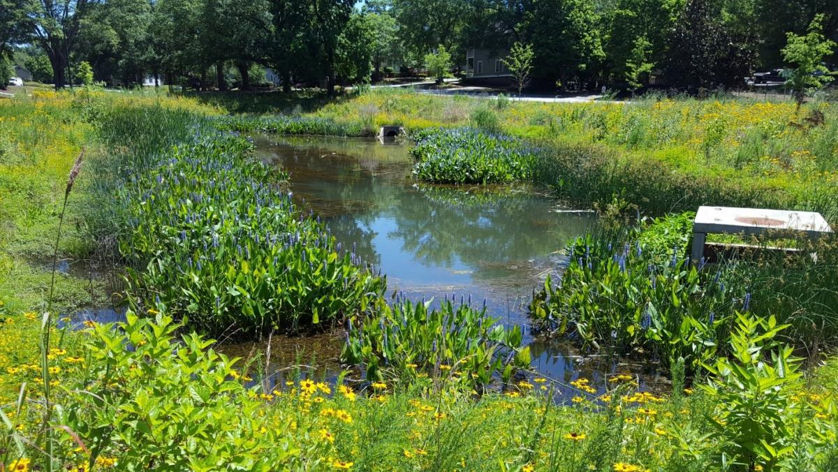 Stormwater pond pictures to pin on pinterest pinsdaddy for Design of stormwater detention ponds